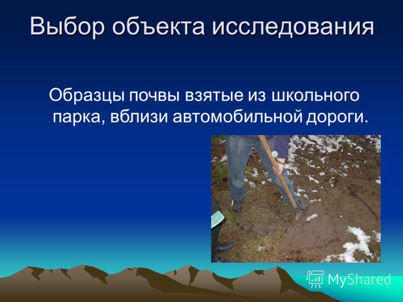 Выбор объекта исследования Образцы почвы взятые из школьного парка, вблизи автомобильной дороги.