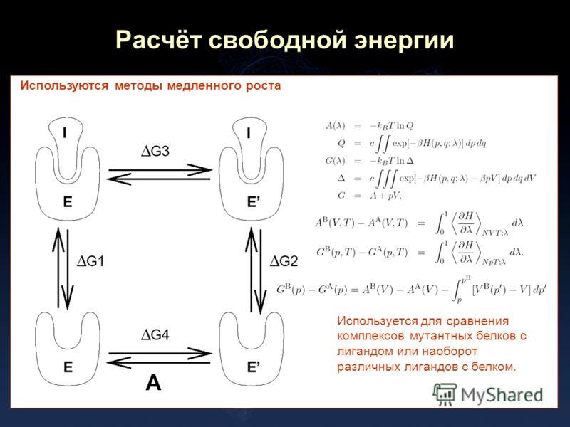 Расчёт свободной энергии Используются методы медленного роста Используется для сравнения комплексов мутантных белков с лигандом или наоборот различных лигандов с белком.