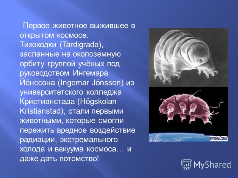 Первое животное выжившее в открытом космосе. Тихоходки (Tardigrada), засланные на околоземную орбиту группой учёных под руководством Ингемара Йёнссона (Ingemar Jönsson) из университетского колледжа Кристианстада (Högskolan Kristianstad), стали первым