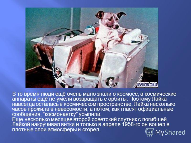 В то время люди ещё очень мало знали о космосе, а космические аппараты ещё не умели возвращать с орбиты. Поэтому Лайка навсегда осталась в космическом пространстве. Лайка несколько часов прожила в невесомости, а потом, как гласят официальные сообщени