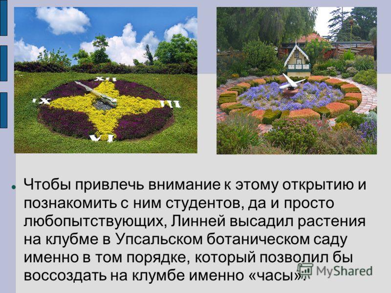Чтобы привлечь внимание к этому открытию и познакомить с ним студентов, да и просто любопытствующих, Линней высадил растения на клубме в Упсальском ботаническом саду именно в том порядке, который позволил бы воссоздать на клумбе именно «часы».