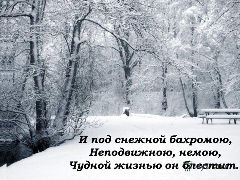 И под снежной бахромою, Неподвижною, немою, Чудной жизнью он блестит.
