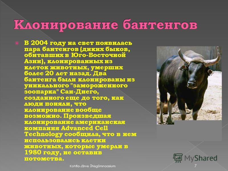 В 2004 году на свет появилась пара бантенгов (диких быков, обитавших в Юго-Восточной Азии), клонированных из клеток животных, умерших более 20 лет назад. Два бантенга были клонированы из уникального