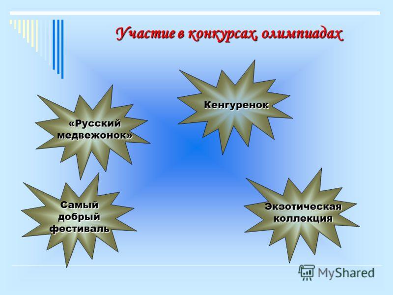Участие в конкурсах, олимпиадах «Русский медвежонок» Кенгуренок Самый добрый фестиваль Экзотическая коллекция