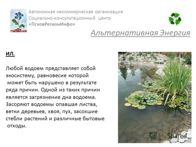 ИЛ. Любой водоем представляет собой экосистему, равновесие которой может быть нарушено в результате ряда причин. Одной из таких причин является загрязнение дна водоема. Засоряют водоемы опавшая листва, ветки деревьев, хвоя, пух, засохшие стебли расте