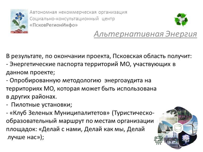 В результате, по окончании проекта, Псковская область получит: - Энергетические паспорта территорий МО, участвующих в данном проекте; - Опробированную методологию энергоаудита на территориях МО, которая может быть использована в других районах. - Пил
