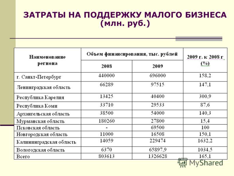 ЗАТРАТЫ НА ПОДДЕРЖКУ МАЛОГО БИЗНЕСА (млн. руб.)