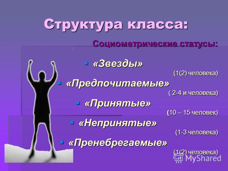 Структура класса: Социометрические статусы: «Звезды» (1(2) человека) «Предпочитаемые» ( 2-4 и человека) «Принятые» (10 – 15 человек) «Непринятые» (1-3 человека) «Пренебрегаемые» (1(2) человека)