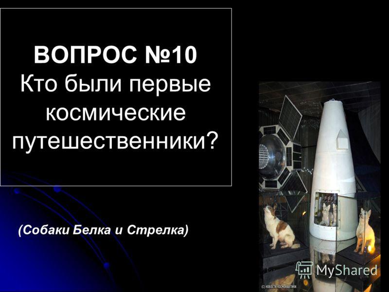 ВОПРОС 10 Кто были первые космические путешественники? (Собаки Белка и Стрелка)