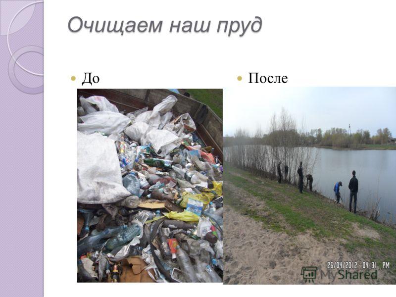 До После Очищаем наш пруд Очищаем наш пруд