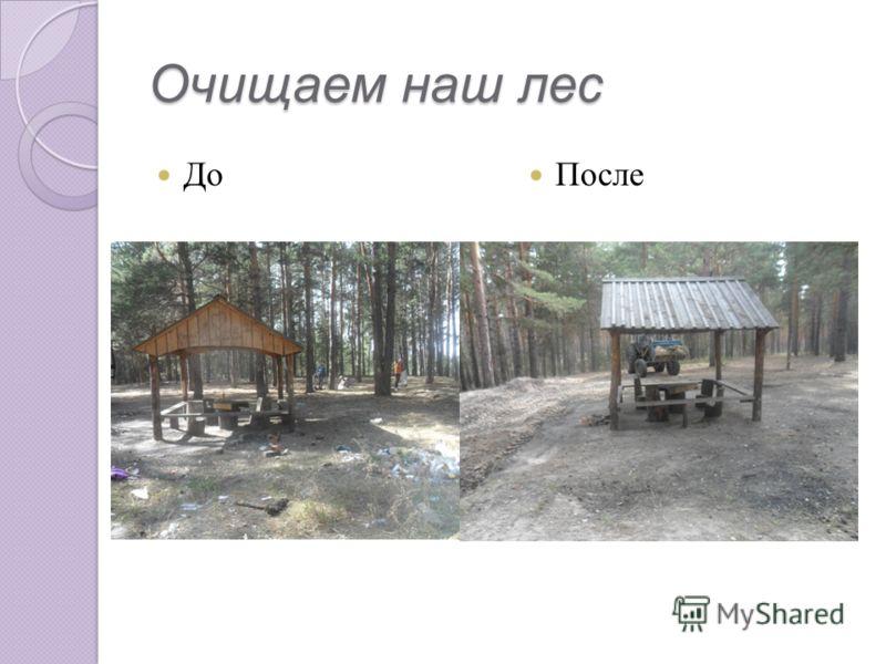 Очищаем наш лес До После