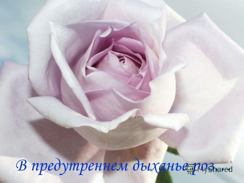 В предутреннем дыханье роз…