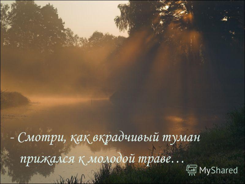 - Смотри, как вкрадчивый туман прижался к молодой траве…