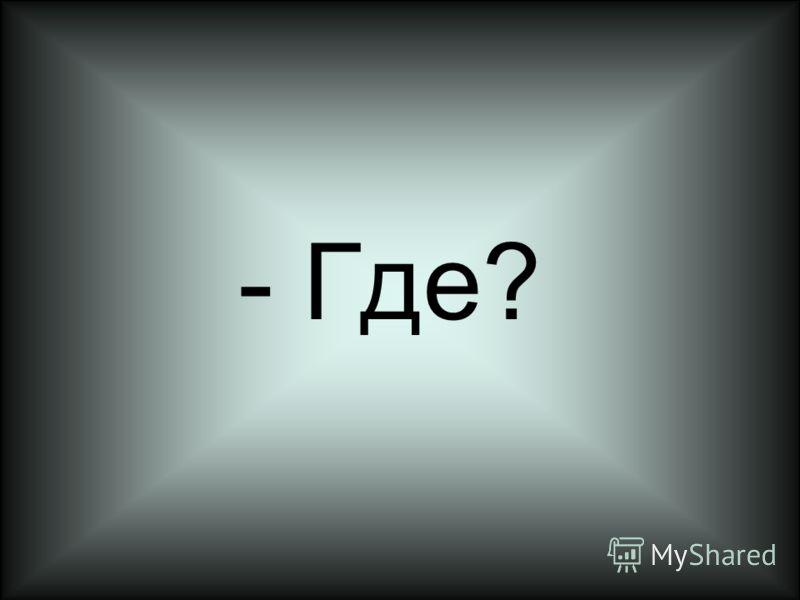- Где?