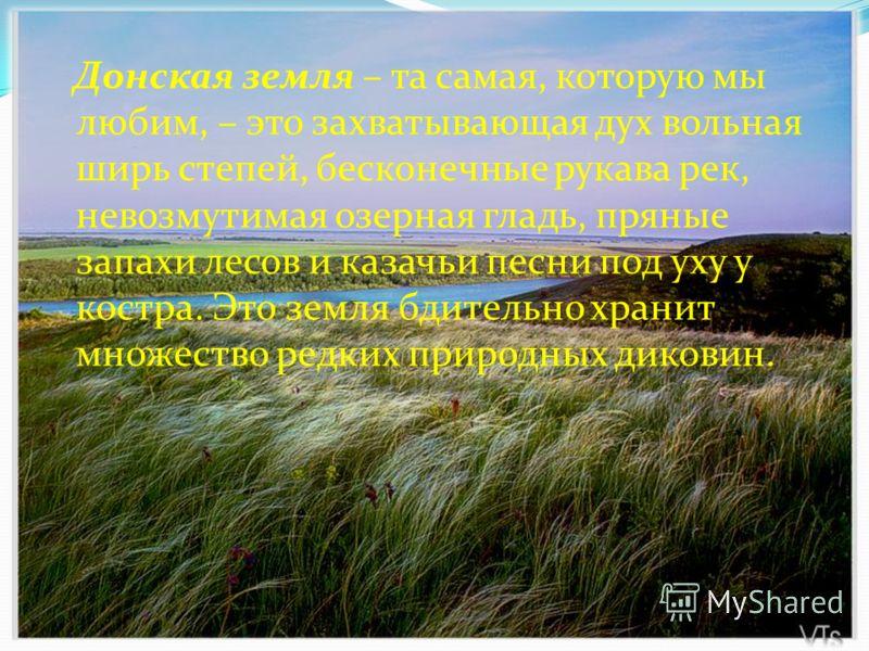 Донская земля – та самая, которую мы любим, – это захватывающая дух вольная ширь степей, бесконечные рукава рек, невозмутимая озерная гладь, пряные запахи лесов и казачьи песни под уху у костра. Это земля бдительно хранит множество редких природных д