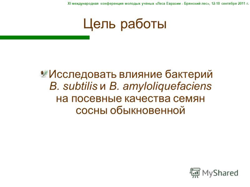 Цель работы Исследовать влияние бактерий B. subtilis и B. amyloliquefaciens на посевные качества семян сосны обыкновенной XI международная конференция молодых учёных «Леса Евразии - Брянский лес», 12-18 сентября 2011 г.