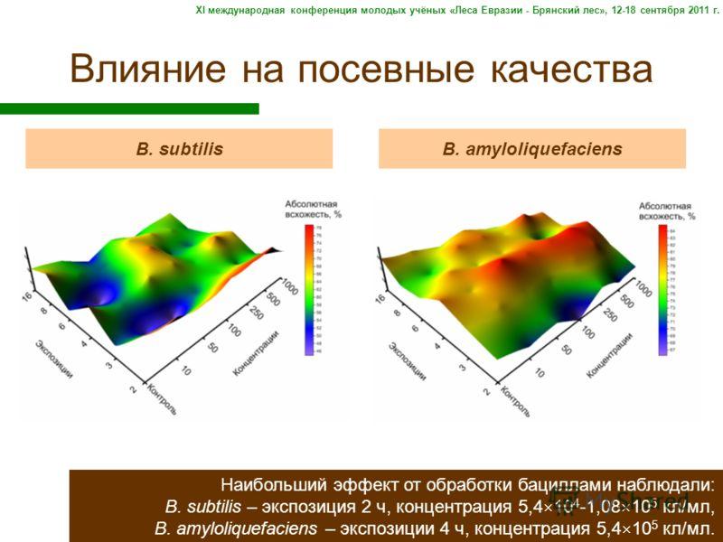 Влияние на посевные качества B. subtilisB. amyloliquefaciens Наибольший эффект от обработки бациллами наблюдали: B. subtilis – экспозиция 2 ч, концентрация 5,4 10 4 -1,08 10 5 кл/мл, B. amyloliquefaciens – экспозиции 4 ч, концентрация 5,4 10 5 кл/мл.