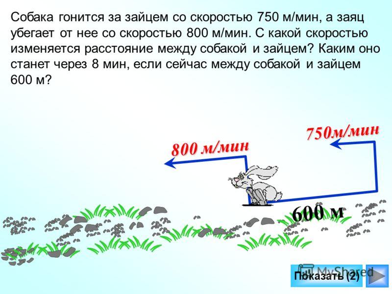 Показать (2) 600 м 800 м/мин 750м/мин Собака гонится за зайцем со скоростью 750 м/мин, а заяц убегает от нее со скоростью 800 м/мин. С какой скоростью изменяется расстояние между собакой и зайцем? Каким оно станет через 8 мин, если сейчас между собак