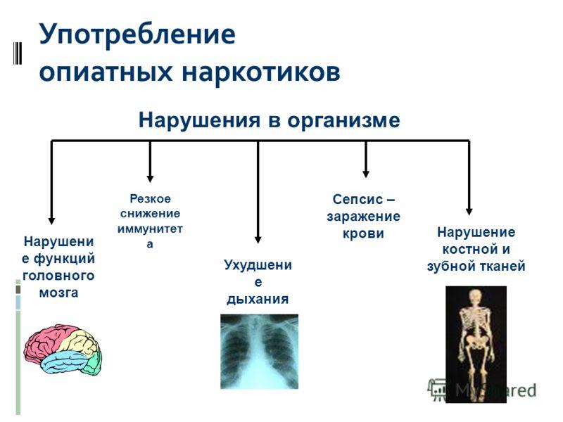 Употребление опиатных наркотиков Нарушени е функций головного мозга Нарушение костной и зубной тканей Ухудшени е дыхания Резкое снижение иммунитет а Сепсис – заражение крови Нарушения в организме