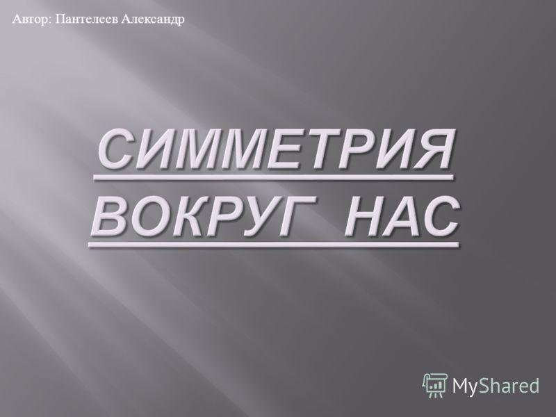 Автор : Пантелеев Александр