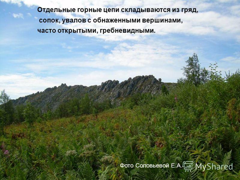 Отдельные горные цепи складываются из гряд, сопок, увалов с обнаженными вершинами, часто открытыми, гребневидными. Фото Соловьевой Е.А.