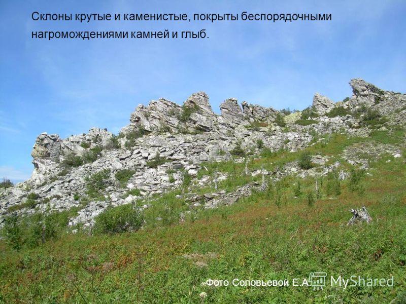 Склоны крутые и каменистые, покрыты беспорядочными нагромождениями камней и глыб. Фото Соловьевой Е.А.