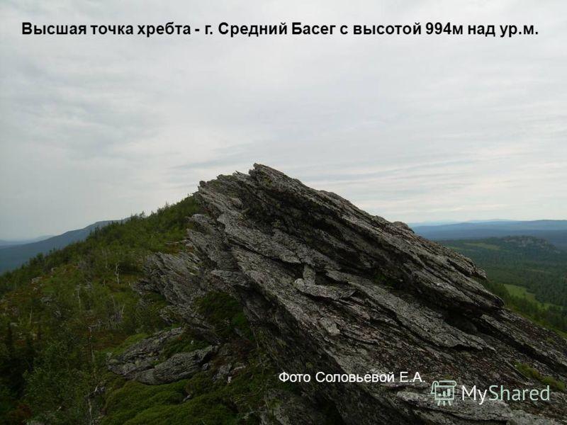 Высшая точка хребта - г. Средний Басег с высотой 994м над ур.м. Фото Соловьевой Е.А.