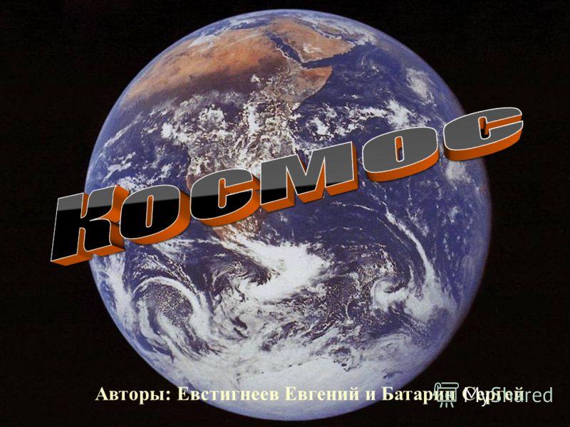Авторы: Евстигнеев Евгений и Батарин Сергей