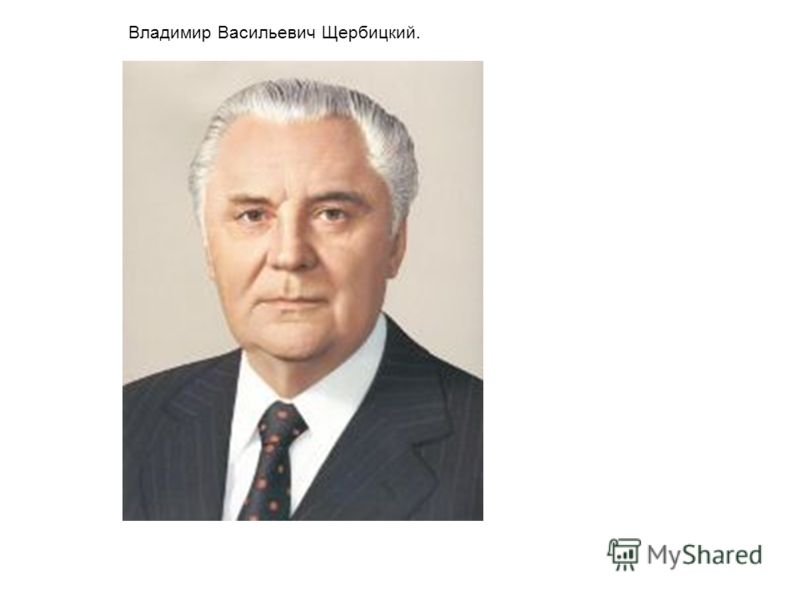 Владимир Васильевич Щербицкий.