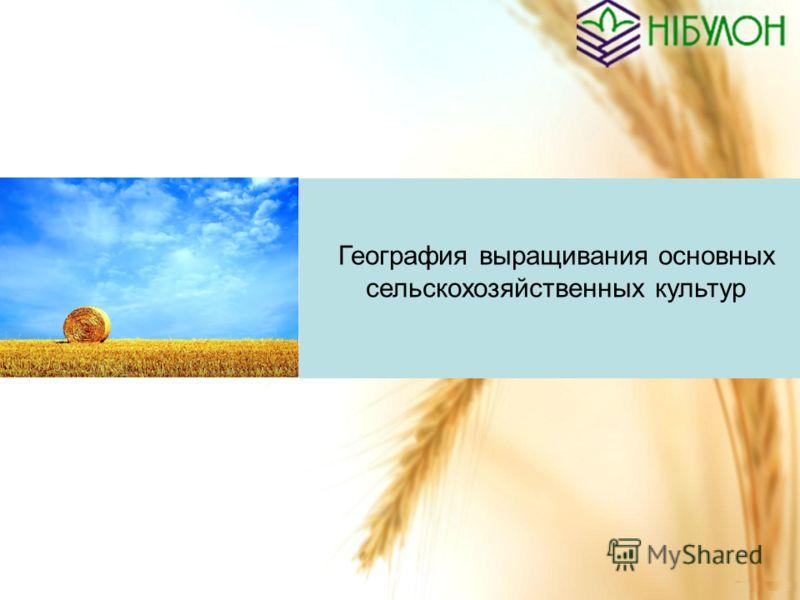 География выращивания основных сельскохозяйственных культур
