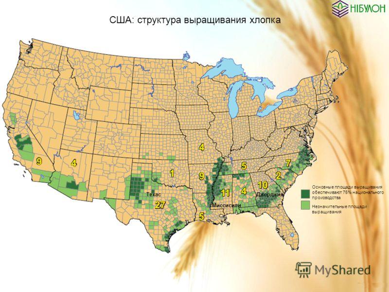 США: структура выращивания хлопка Основные площади выращивания обеспечивают 75% национального производства Незначительные площади выращивания Техас Миссисипи Джорджия