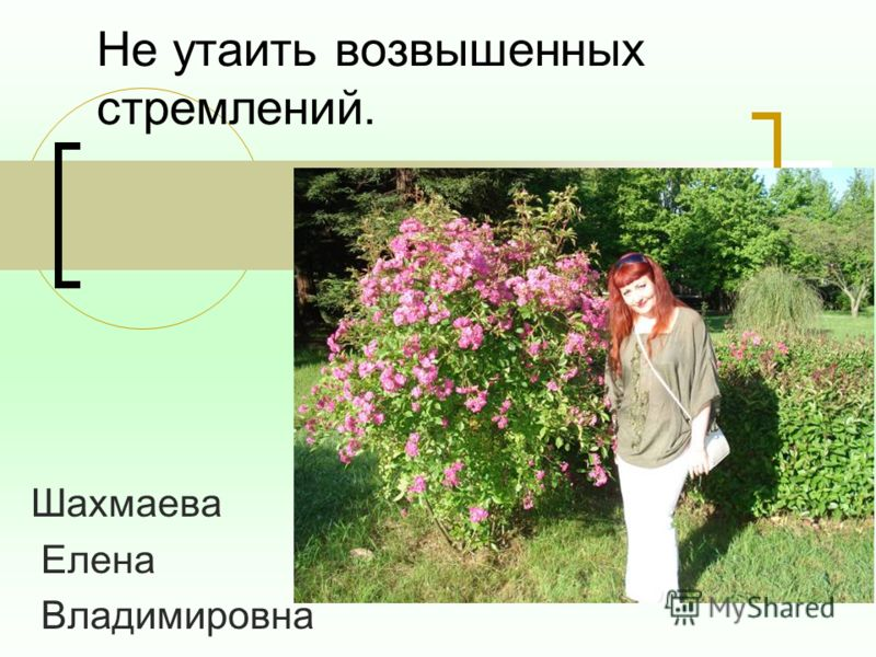 Не утаить возвышенных стремлений. Шахмаева Елена Владимировна