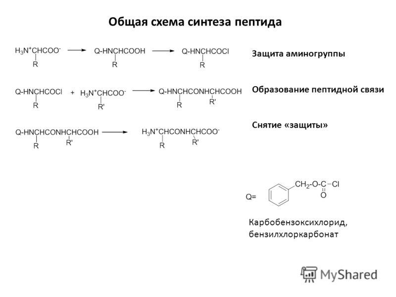 Общая схема синтеза пептида Защита аминогруппы Образование пептидной связи Снятие «защиты» Карбобензоксихлорид, бензилхлоркарбонат