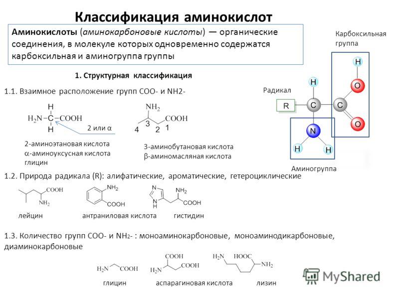 Классификация аминокислот Карбоксильная группа Радикал Аминогруппа Аминокислоты (аминокарбоновые кислоты) органические соединения, в молекуле которых одновременно содержатся карбоксильная и аминогруппа группы 2-аминоэтановая кислота -аминоуксусная ки