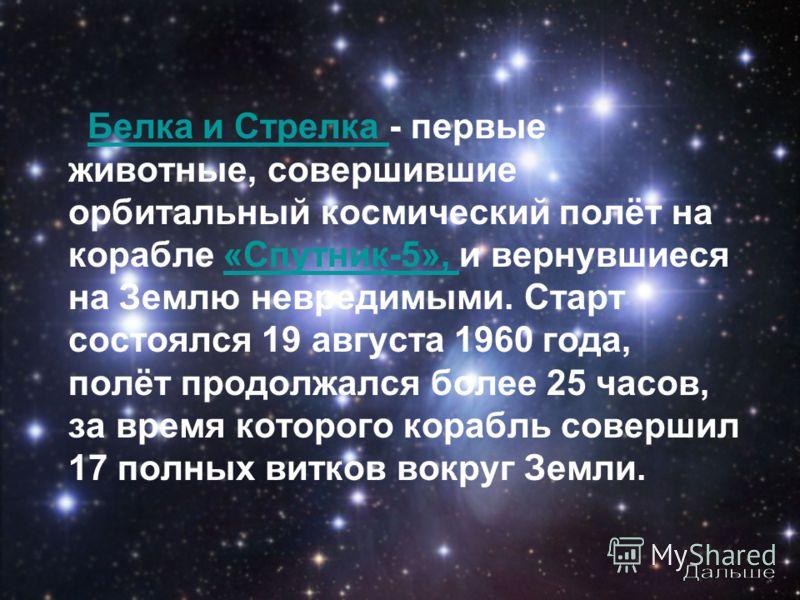 Белка и Стрелка - первые животные, совершившие орбитальный космический полёт на корабле «Спутник-5», и вернувшиеся на Землю невредимыми. Старт состоялся 19 августа 1960 года, полёт продолжался более 25 часов, за время которого корабль совершил 17 пол