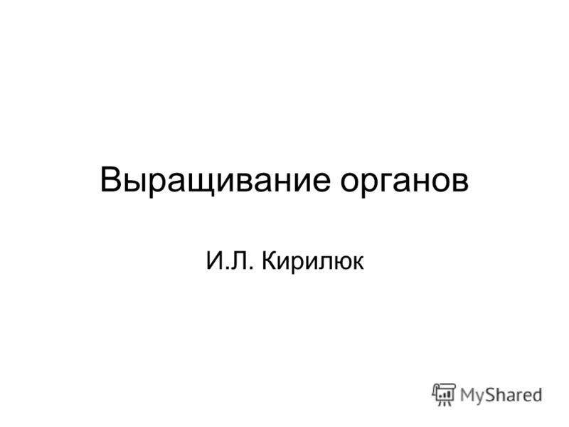 Выращивание органов И.Л. Кирилюк