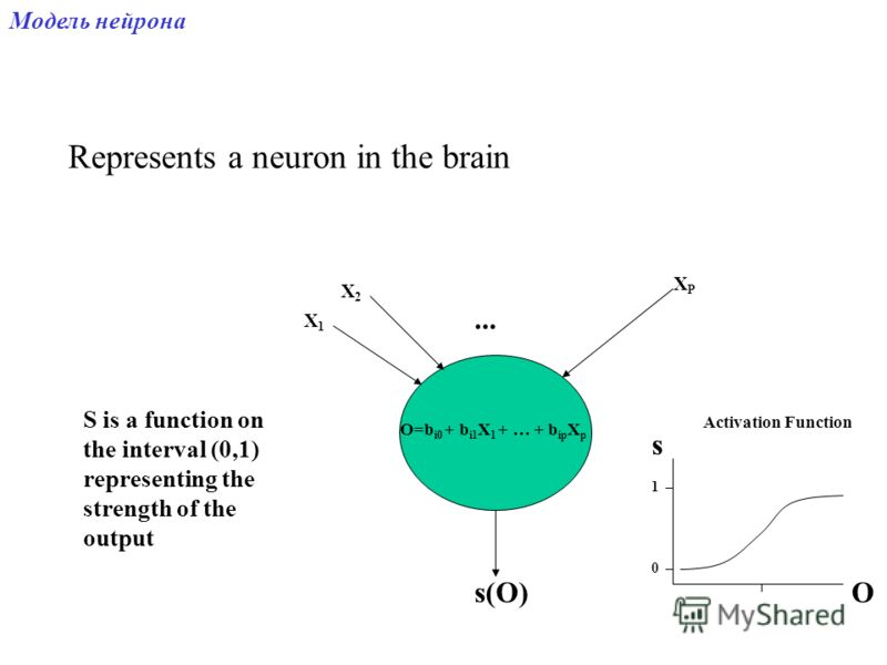 Represents a neuron in the brain X1X1 X2X2 XPXP... O=b i0 + b i1 X 1 + … + b ip X p s(O) S is a function on the interval (0,1) representing the strength of the output 0 1 s O Activation Function Модель нейрона