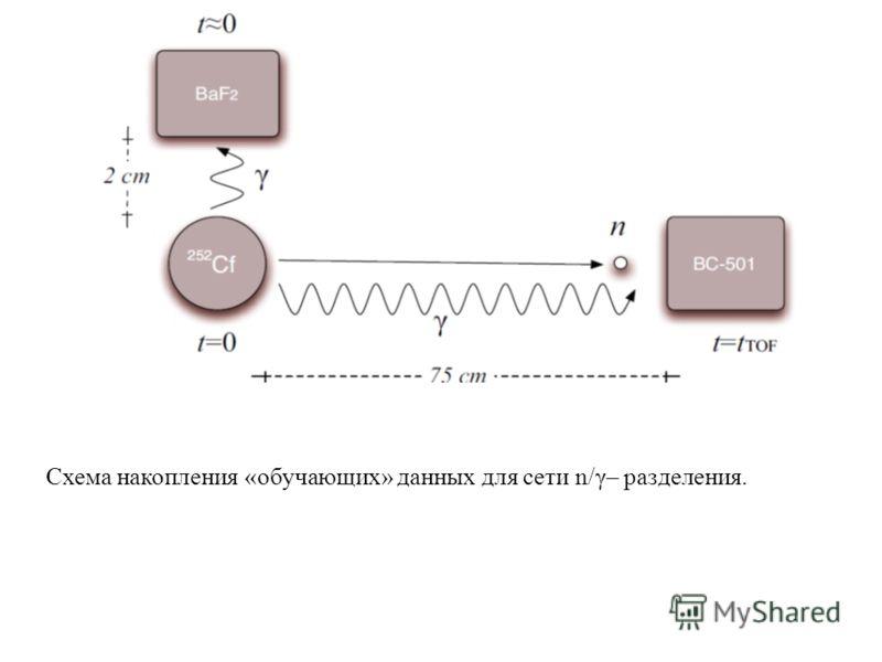 Схема накопления «обучающих» данных для сети n/γ– разделения.