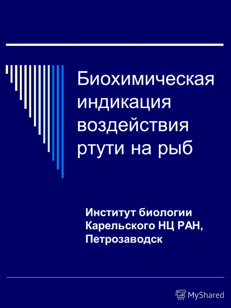 Биохимическая индикация воздействия ртути на рыб Институт биологии Карельского НЦ РАН, Петрозаводск