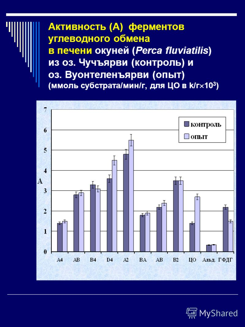 Активность (А) ферментов углеводного обмена в печени окуней (Perca fluviatilis) из оз. Чучъярви (контроль) и оз. Вуонтеленъярви (опыт) (ммоль субстрата/мин/г, для ЦО в k/г 10 3 )