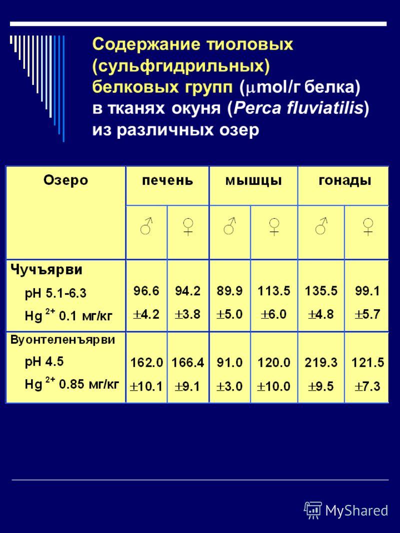 Содержание тиоловых (сульфгидрильных) белковых групп ( mol/г белка) в тканях окуня (Perca fluviatilis) из различных озер