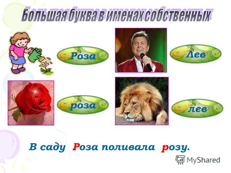 Роза роза Лев лев В саду. оза поливала. озу.Рр