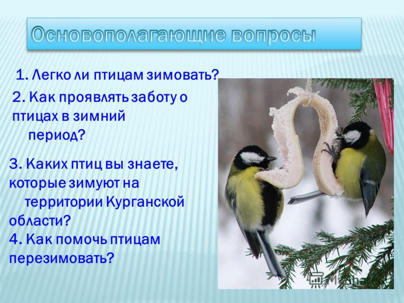 1. Легко ли птицам зимовать? 2. Как проявлять заботу о птицах в зимний период? 3. Каких птиц вы знаете, которые зимуют на территории Курганской области? 4. Как помочь птицам перезимовать?