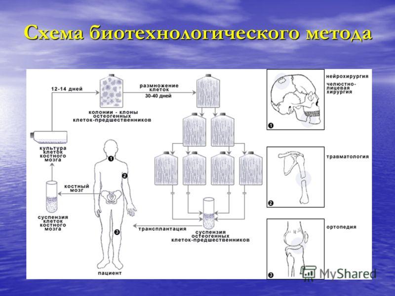 Схема биотехнологического метода