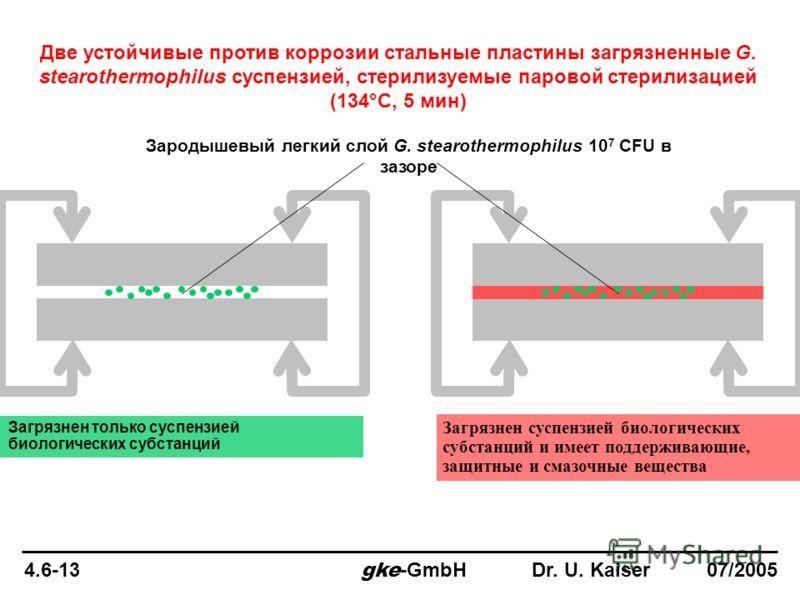 4.6-13 gke -GmbH Dr. U. Kaiser 07/2005 Две устойчивые против коррозии стальные пластины загрязненные G. stearothermophilus суспензией, стерилизуемые паровой стерилизацией (134°C, 5 мин) Зародышевый легкий слой G. stearothermophilus 10 7 CFU в зазоре