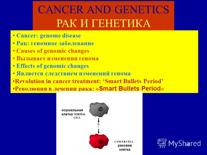 15 CANCER AND GENETICS РАК И ГЕНЕТИКА Cancer: genome disease Рак: геномное заболевание Causes of genomic changes Вызывает изменения генома Effects of genomic changes Является следствием изменений генома Revolution in cancer treatment: Smart Bullets P