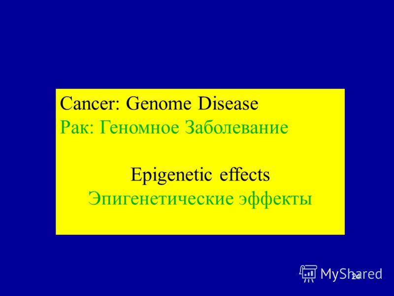 24 Cancer: Genome Disease Рак: Геномное Заболевание Epigenetic effects Эпигенетические эффекты