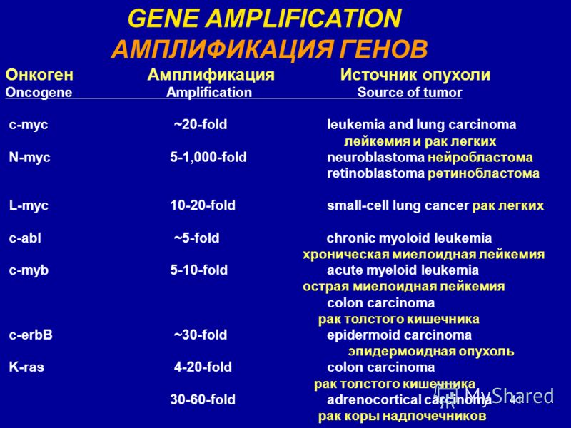 41 GENE AMPLIFICATION АМПЛИФИКАЦИЯ ГЕНОВ Онкоген Амплификация Источник опухоли OncogeneAmplification Source of tumor c-myc ~20-foldleukemia and lung carcinoma лейкемия и рак легких N-myc 5-1,000-foldneuroblastoma нейробластома retinoblastoma ретинобл