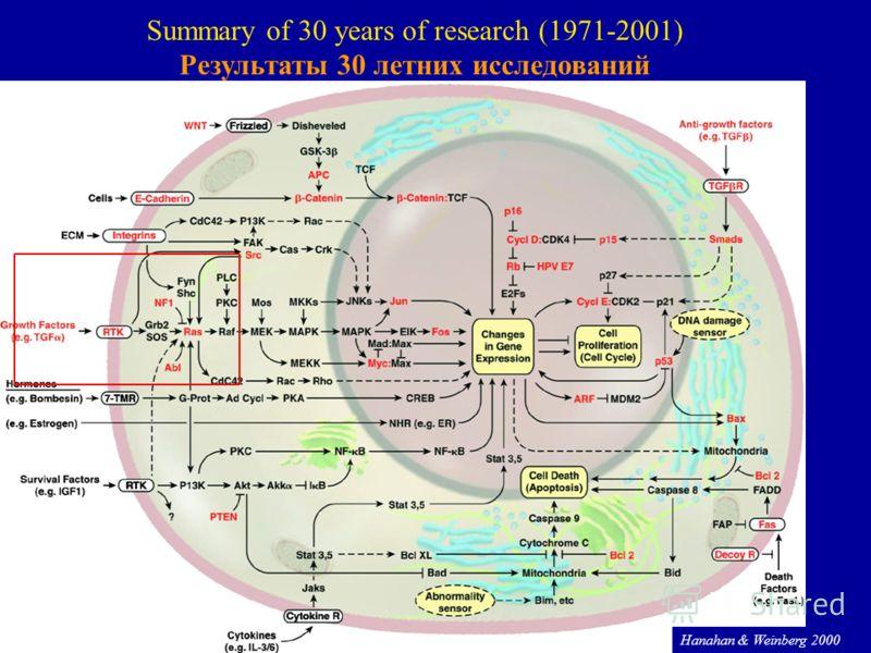 58 Hanahan & Weinberg 2000 Summary of 30 years of research (1971-2001) Результаты 30 летних исследований