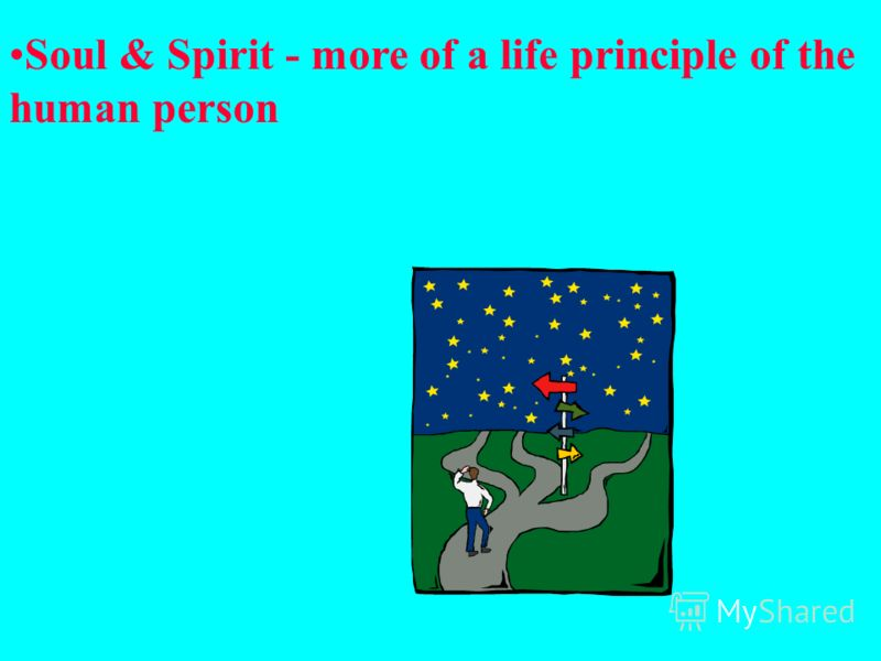 Soul & Spirit - more of a life principle of the human person